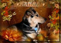 Bango Fall