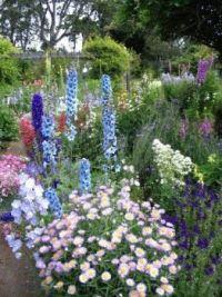 Een tuin vol bloemen