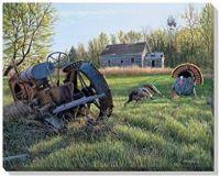 Heavy Metal-Turkeys by Jim Kasper