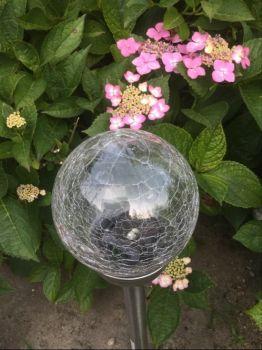 A garden light and some hydrangeas