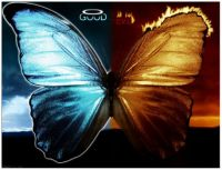 good_vs_evil_butterfly_by_xxxdrewxxx