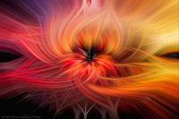 Twirled-L_Pokegma_Sunset-3403