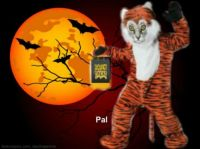 Pal says Trick or Treat!