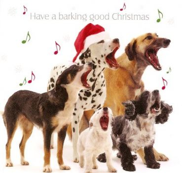 Have a barking good Christmas