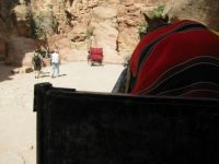 In a horse buggy entering the chasm that leads to the famous Treasury Building (Al-Khaznah) in Petra, Jordan