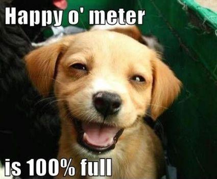 Happy face puppy