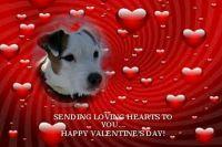 JRT Valentine 0214