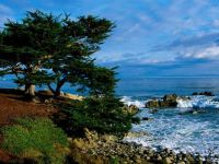 Pacific Grove Coastline, California