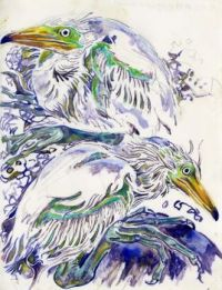 Young White Herons by Walter Inglis Anderson
