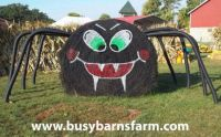 Bale of Hay Spider