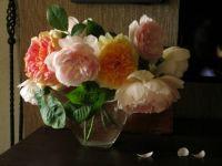 Austin roses in a vase