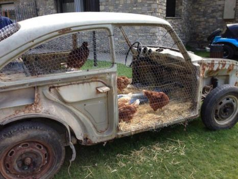 A Chicken Coupe