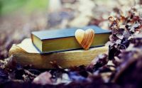 books-love-heart-autumn-leaves-bokeh