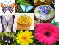Flowers, Butterflies & Cupcakes