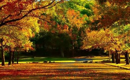 Honor Heights Park~Muskogee, Okla