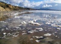 Torrey Pines Beach -phyto plankton bloom