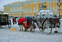 carriages St Petersburg Russia