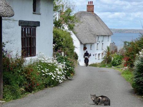 Road Down to Church Cove on The Lizard, Cornwall