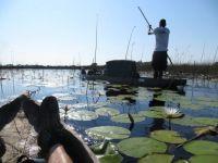 Ocavango Delta 2013