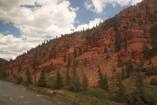 View from the train. ~ Rocky Mtns. Colorado