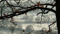 Finally, the snow has come, Sahy, Slovakia