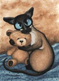 """Siamese Cat With Teddy Bear"""