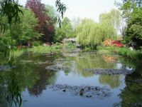 Pond, Giverny France