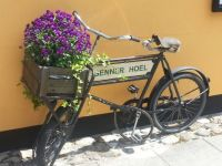 cykel med blomster
