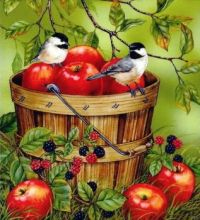 Birds with apples image