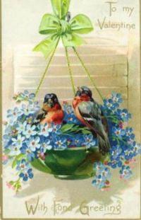 Valentine Birds