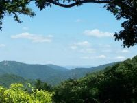 Theme: National Parks - THIS one is Shenandoah in Virginia