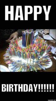 sillychick/JamaLlama Birthday Today
