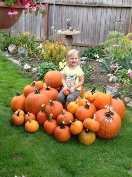 Our Pumpkin in the Pumpkin Patch