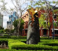 San Diego Downtown - Art on MLK Promenade