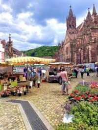 7.9 Münstermarkt einkaufen