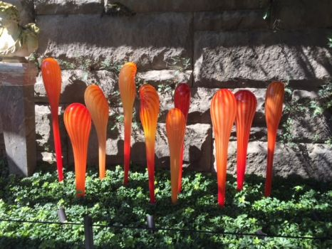 Chihuly @ The Biltmore House