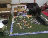 Shirleys Cat Puzzle