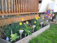 Spring Gardens '13