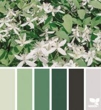 6_21_Color_Nature_