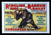 Barnum & Bailey Ringling Bros Vintage Poster