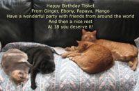 Tisket's 18th Birthday 2020
