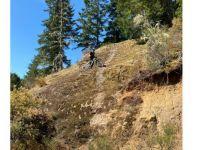 Mt. Washington MTB trail