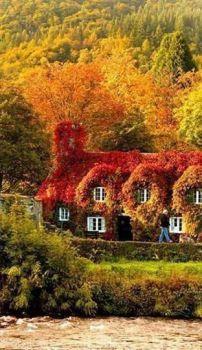 Mooie herfst kleuren