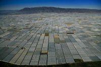 Greenhouses in San Augustin near Almerc3ada Andalusia Spain Photograph by YANN ARTHUS BERTRAND