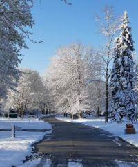 April 21 2021 Snow #2