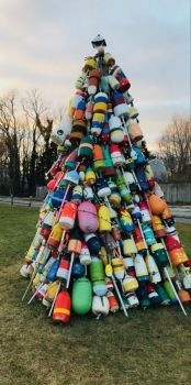 Buoy tree today, in daylight on the village green