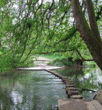 Stepping Stones, Box Hill, Surrey