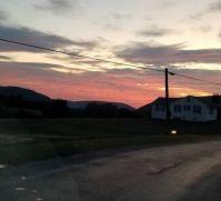 Pink Sky tonight