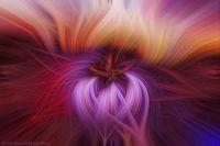 Twirled-Ruby_AZ_Sunset-1