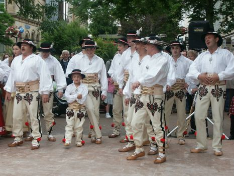 The men's section of a dance group at Carlisle - 10th Jul 2004